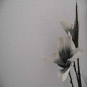 Blume-180x180